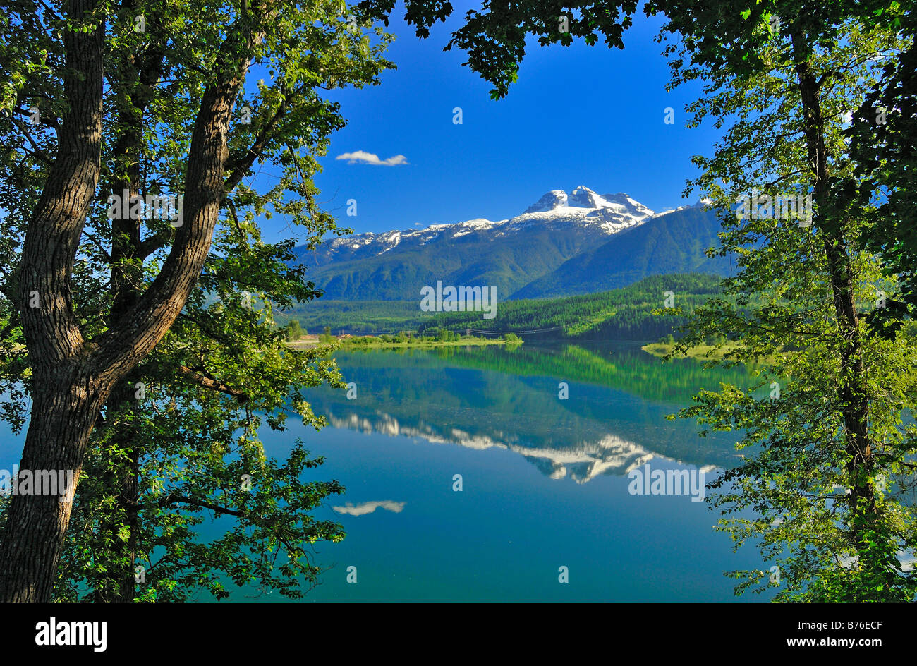 Mount Begbie near the town of Revelstoke in British Columbia, Canada, framed by trees. Horizontal Format - Stock Image