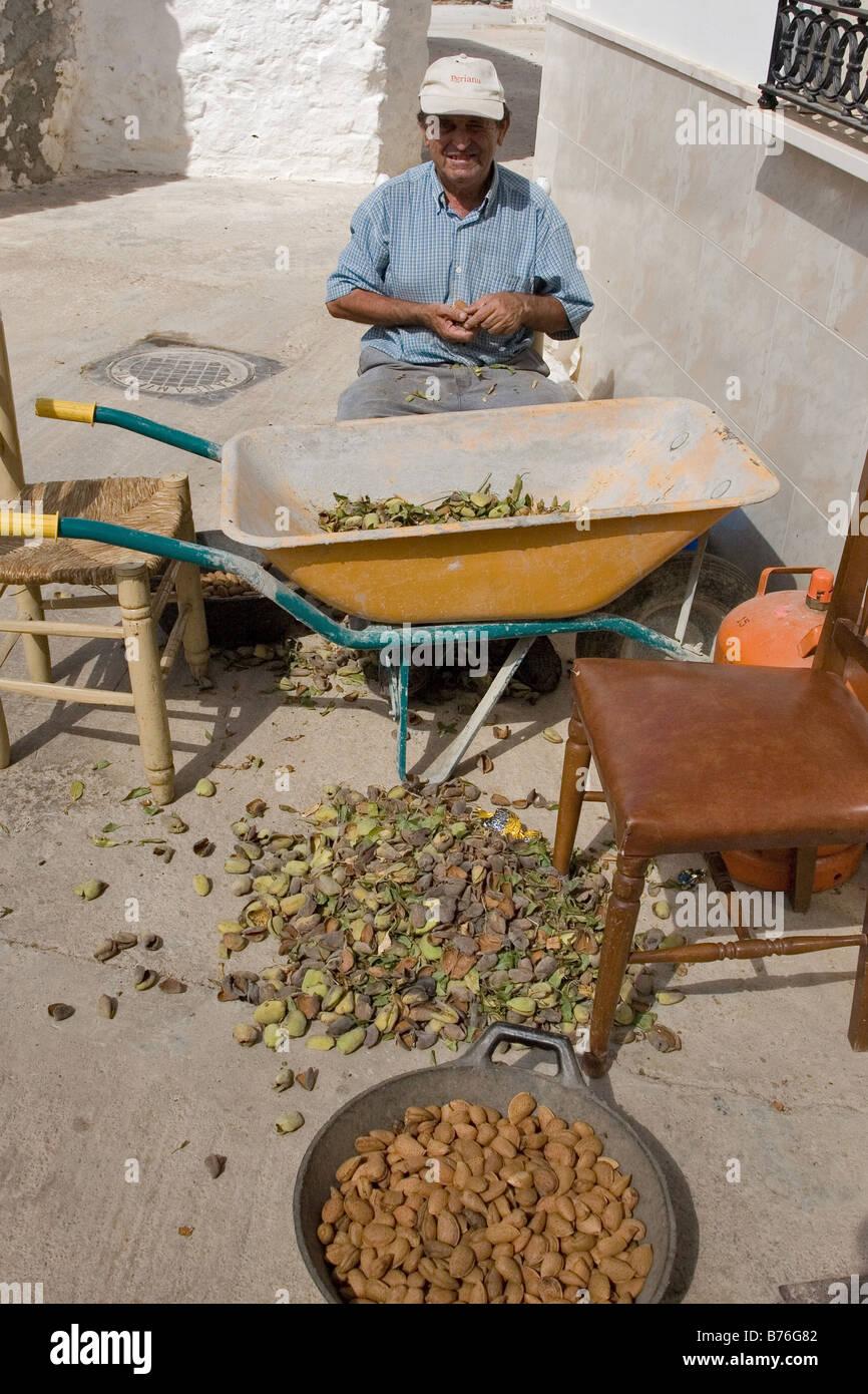 Old Man Break Shells of Almond Nuts, Altarnatejo Village, Andalucia, Spain - Stock Image