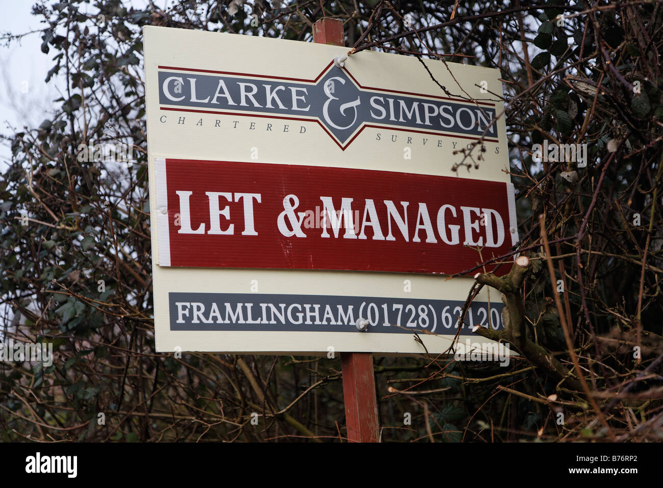 Let and Managed Estate Agents sign - Stock Image