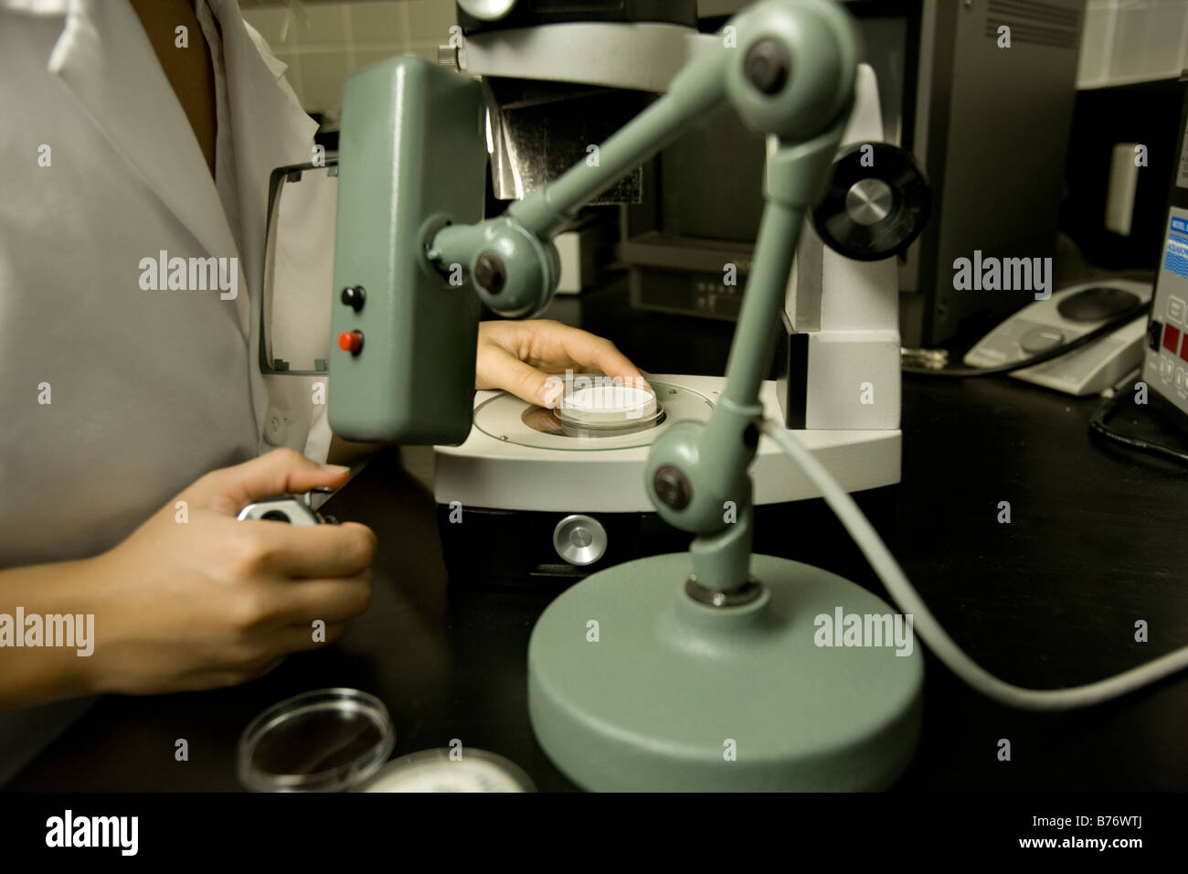 Scientist performing a bacteria count, Membrane filtration method, laboratory Stock Photo