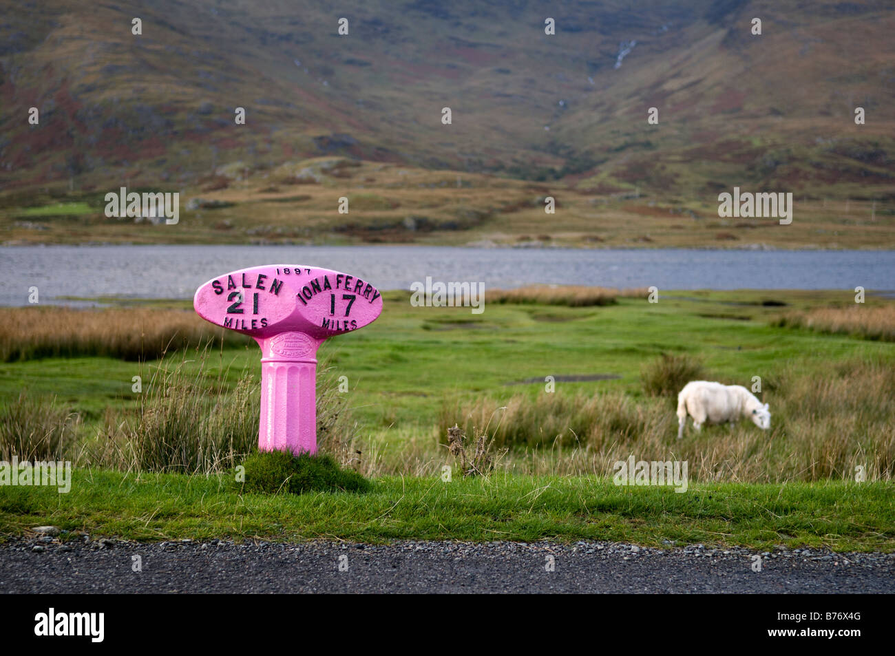 Brightly coloured, painted pink road sign showing distance in miles to Salen and Iona Ferry from the A849 on the - Stock Image