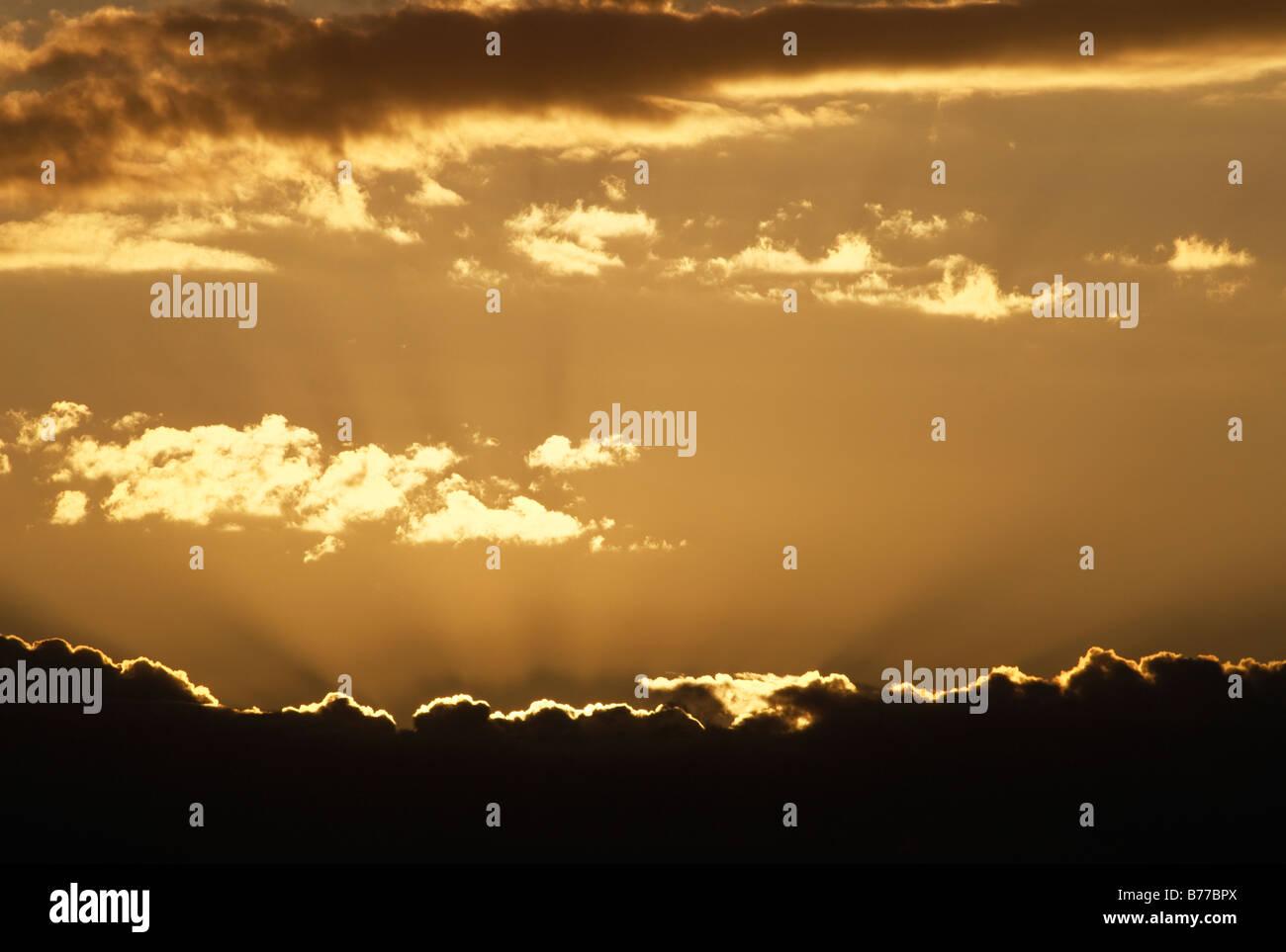 Golden rays of light - Stock Image