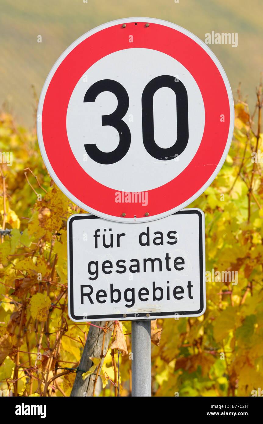 Speed limit traffic sign in a wine-growing region - Stock Image