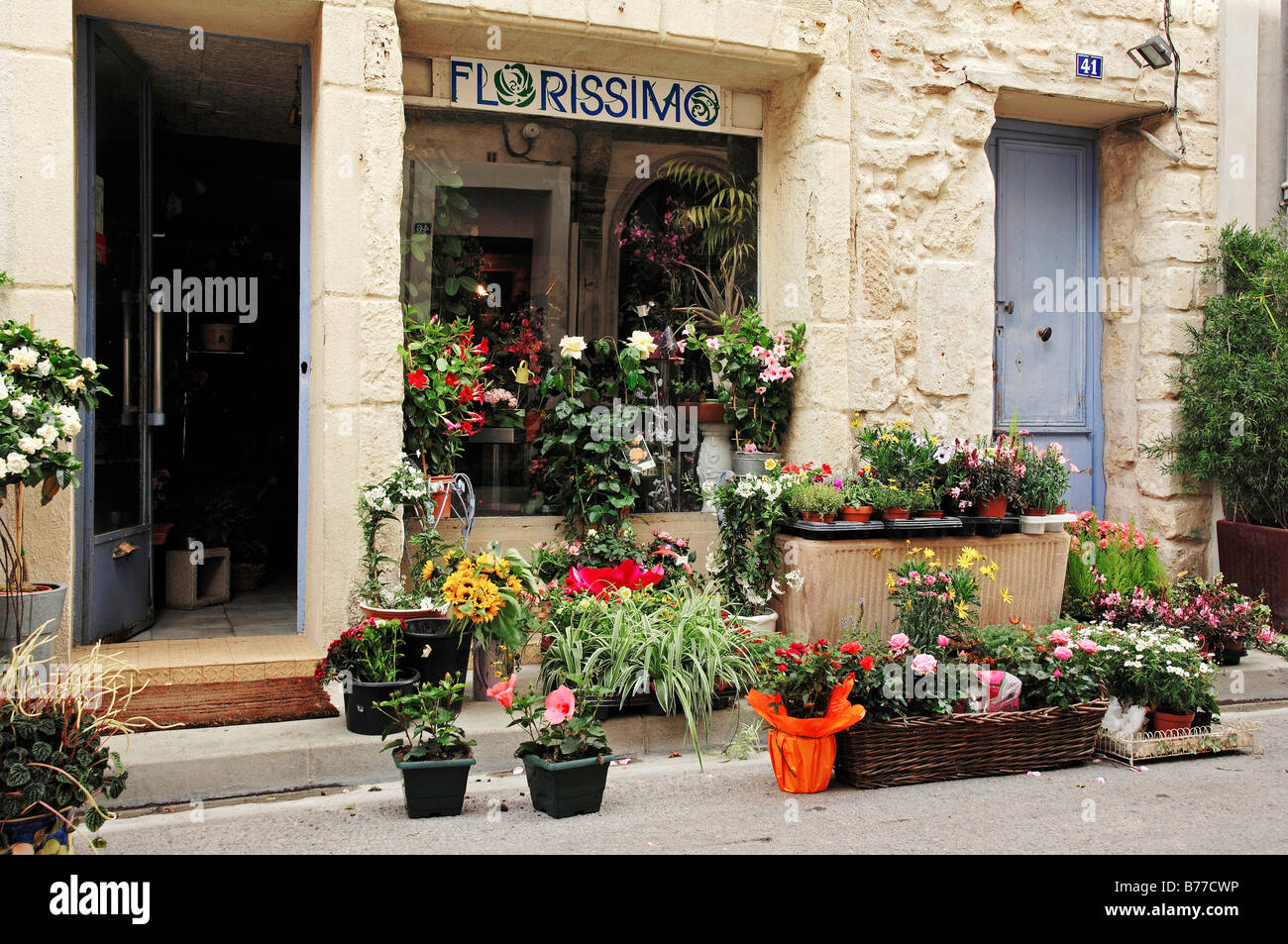 Flower shop, Aigues-Mortes, Camargue, Gard, Languedoc-Roussillon, Southern France, France, Europe - Stock Image