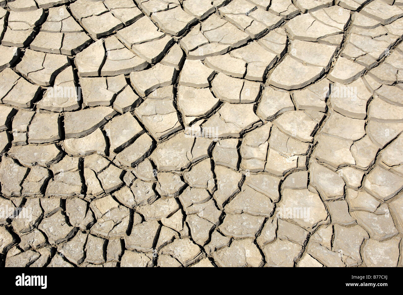 Dried out earth, Camargue, Provence, Southern France, France, Europe - Stock Image