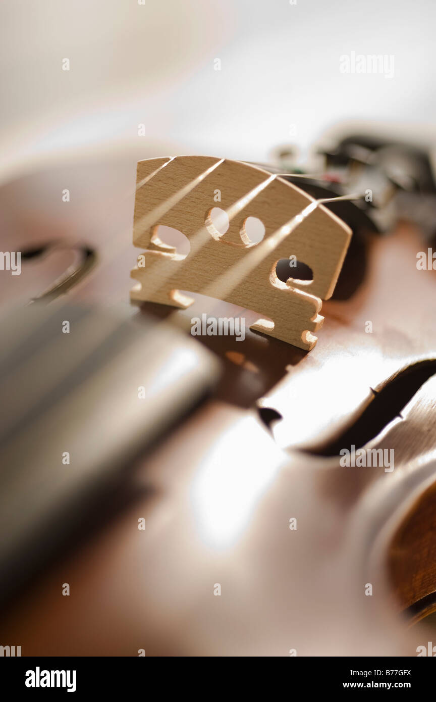 Close up of violin strings - Stock Image