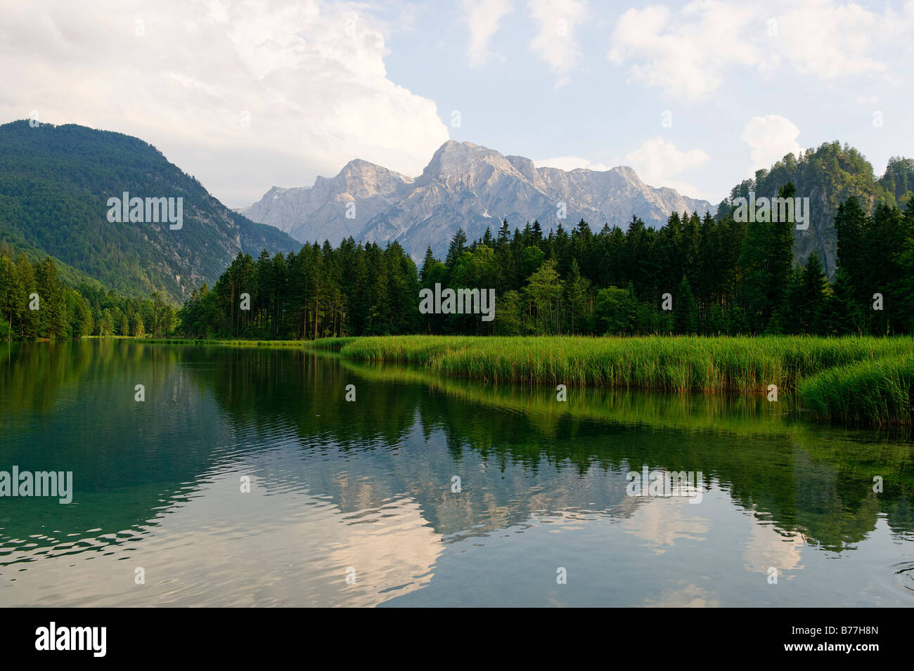 Almsee in the Alm valley below the Totes Gebirge mountains, Upper Austria, Austria, Europe Stock Photo