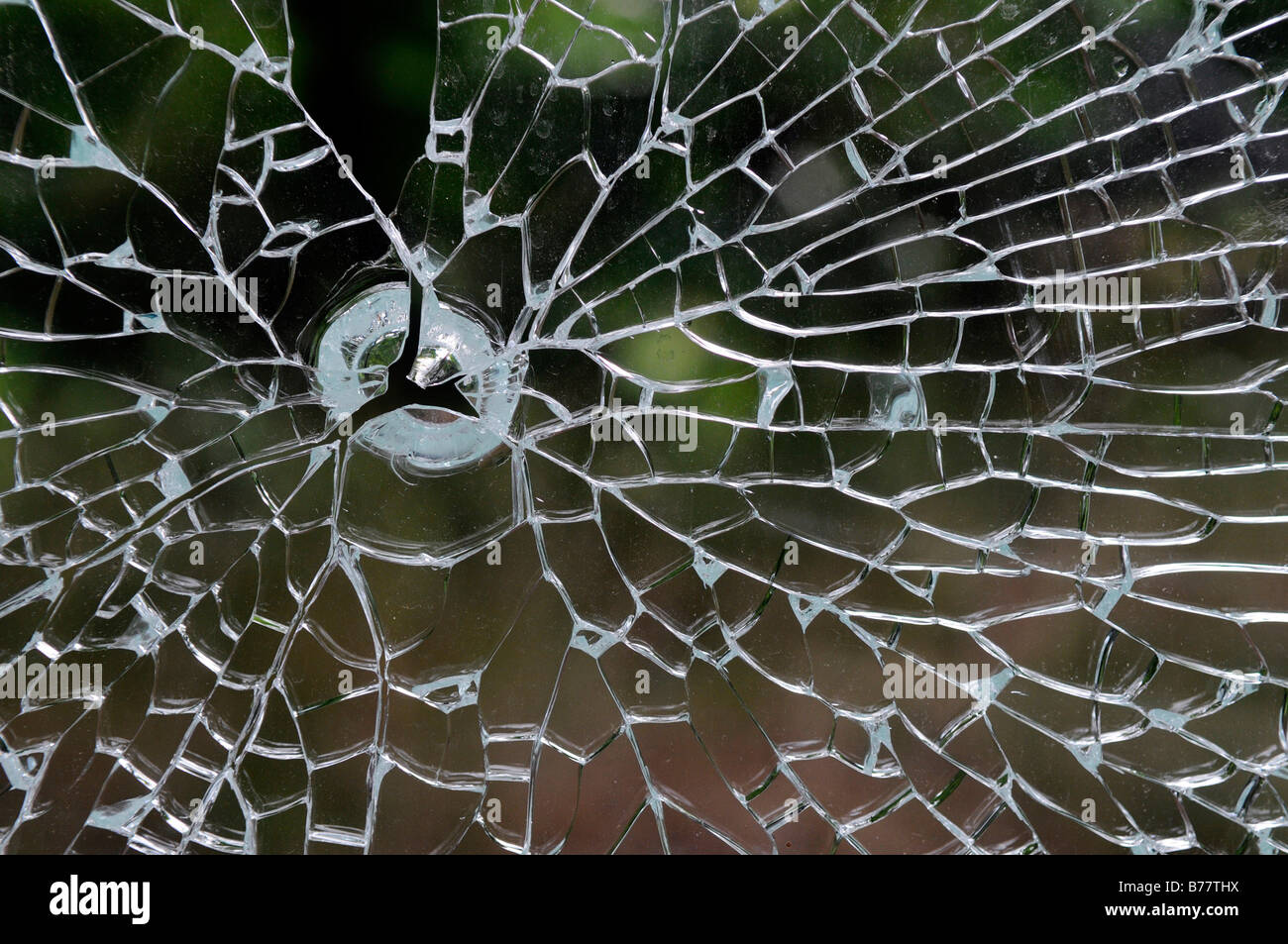 Shattered safety glass panel - Stock Image