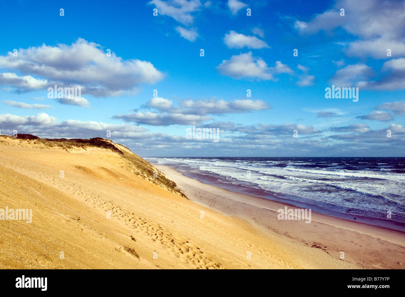 Cape Cod National Seashore Eastham Cape Cod Massachusetts - Stock Image