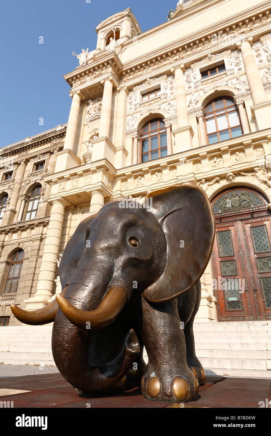 Afrikanischer Elefant', sculpture by Gottfried Kumpf, Museum of Natural History, Vienna, Austria, Europe - Stock Image