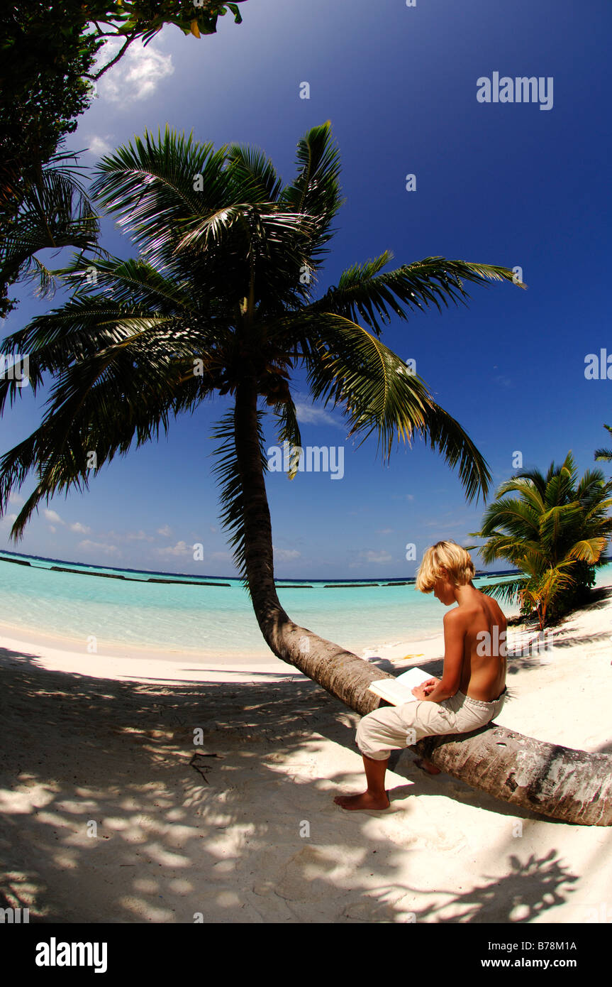 Young boy reading on a palm tree trunk in Kurumba Resort, The Maldives, Indian Ocean - Stock Image