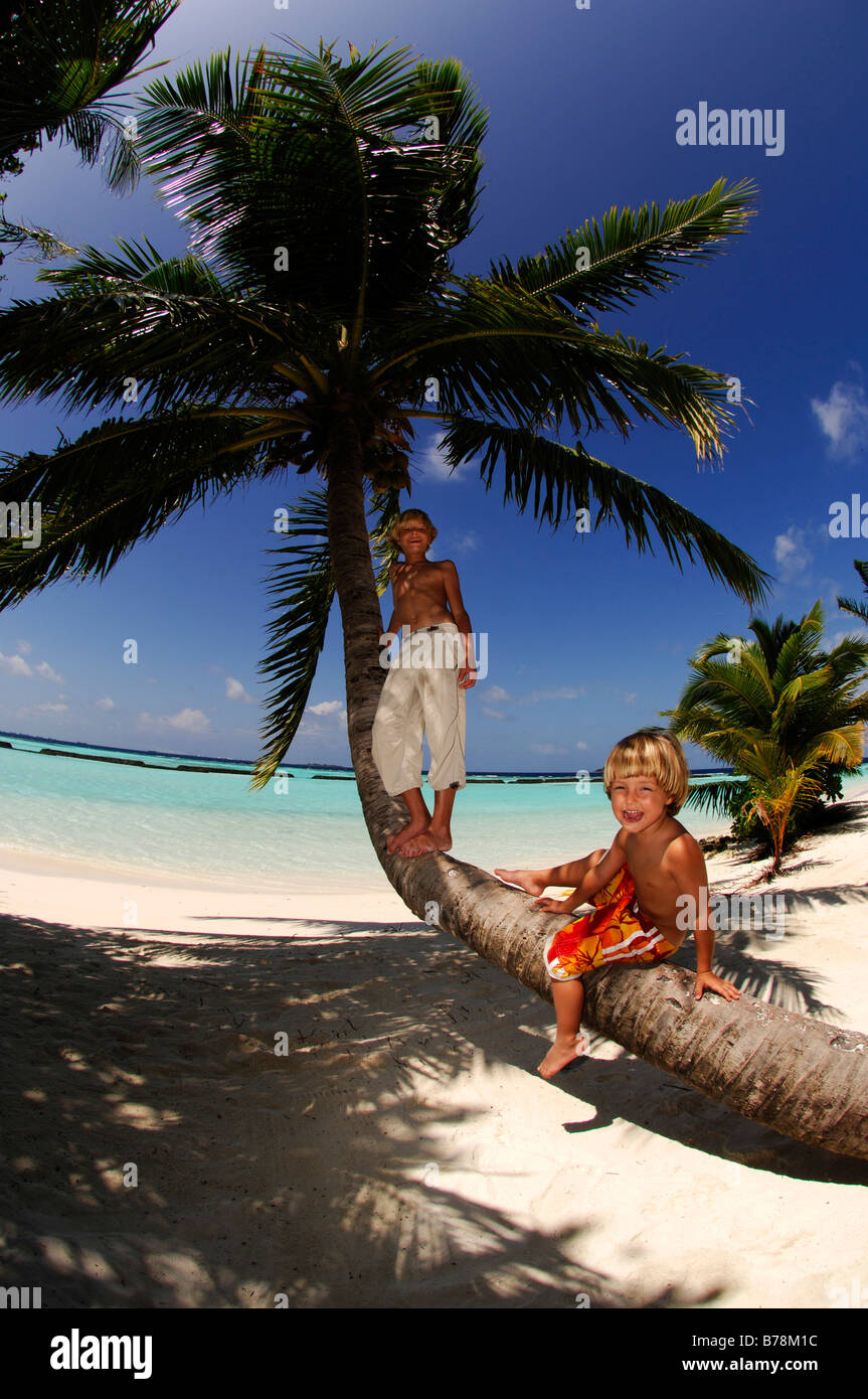Children on a palm tree trunk in Kurumba Resort, The Maldives, Indian Ocea Stock Photo