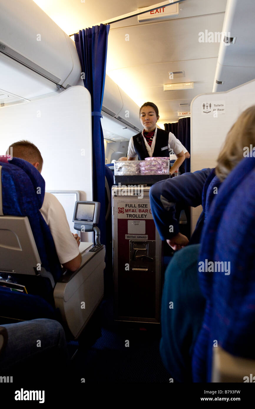 Flight Attendant Serving Meal To Passengers In Economy