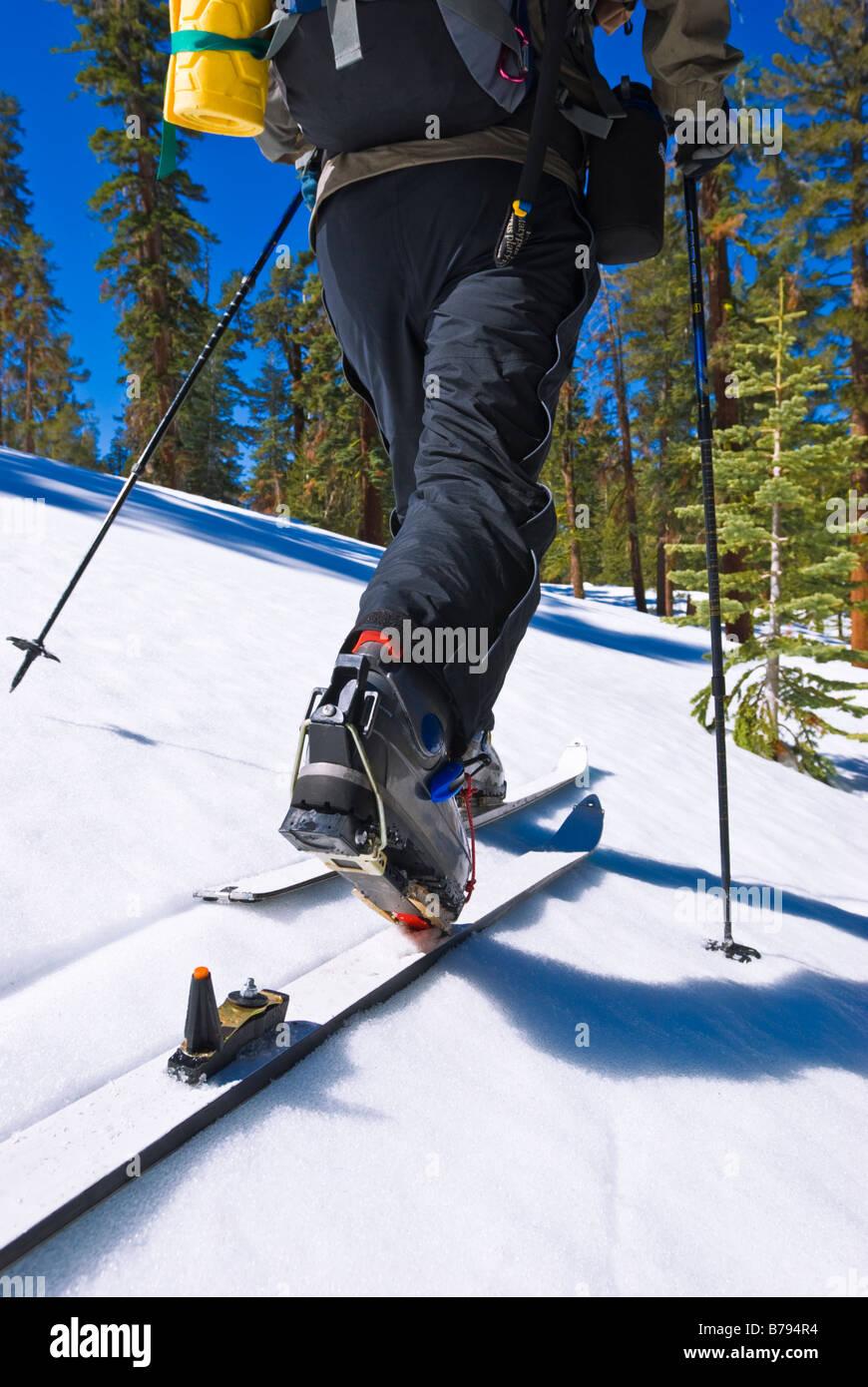 Backcountry skier near Glacier Point Yosemite National Park California - Stock Image