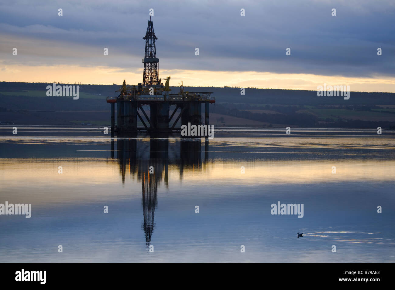 GSF ARCTIC II, Oil Rig in Cromarty Firth, in the port of Invergordon, Scotland, UK - Stock Image