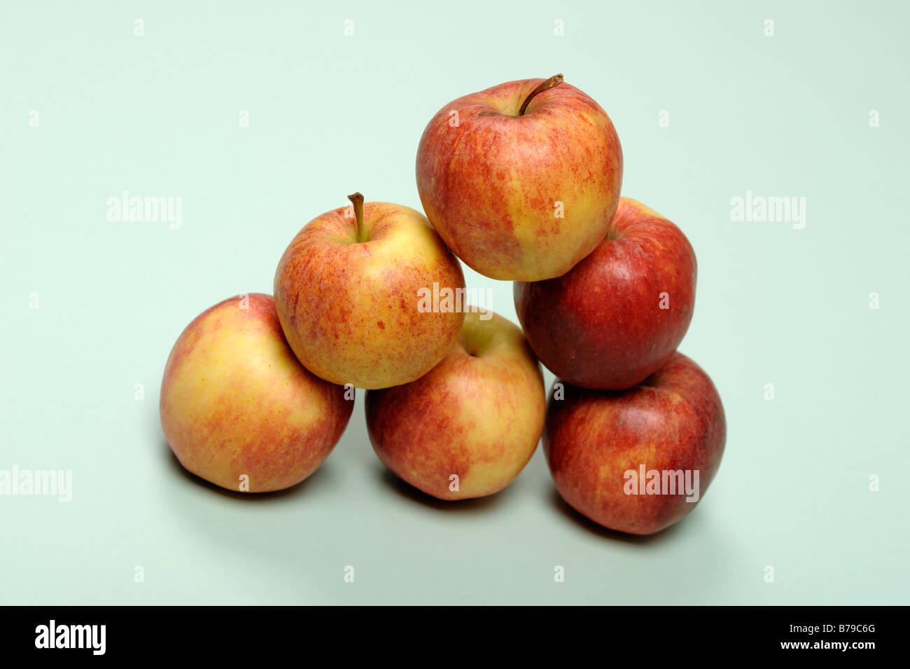 Six Royal Gala apples - Stock Image