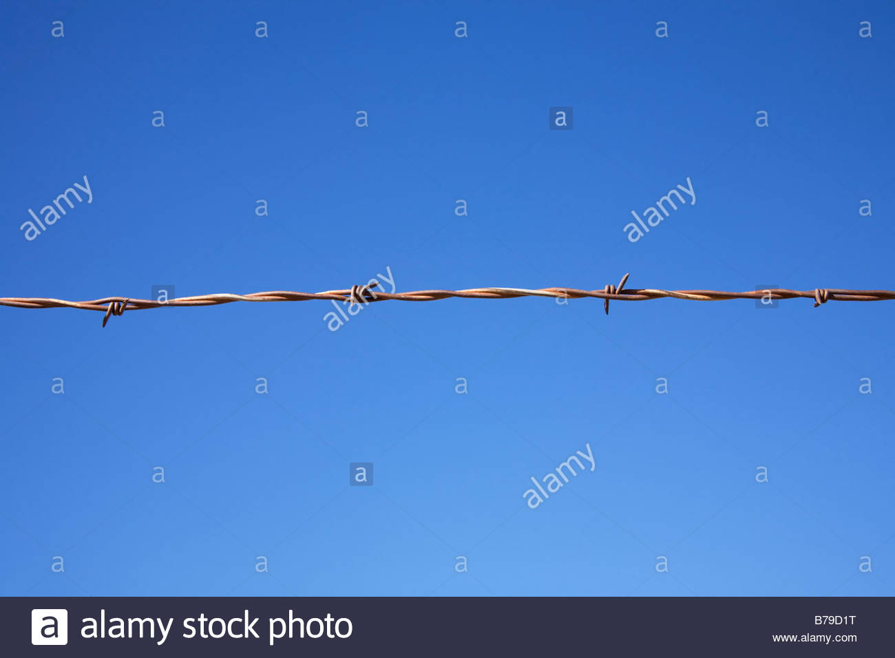 Rusty barb wire fence blue sky background - Stock Image