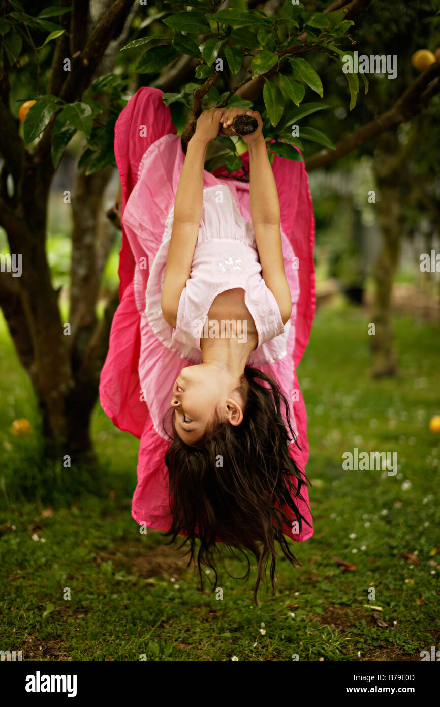 Five year old girl climbs a tree - Stock Image