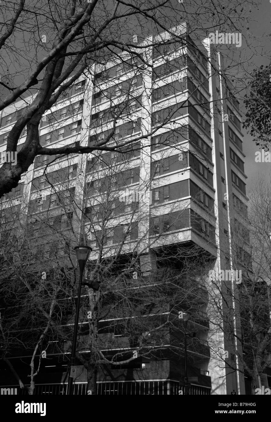 high contrast monotone shot of a block of flats or apartments viewed through a bare tree in the winter - Stock Image