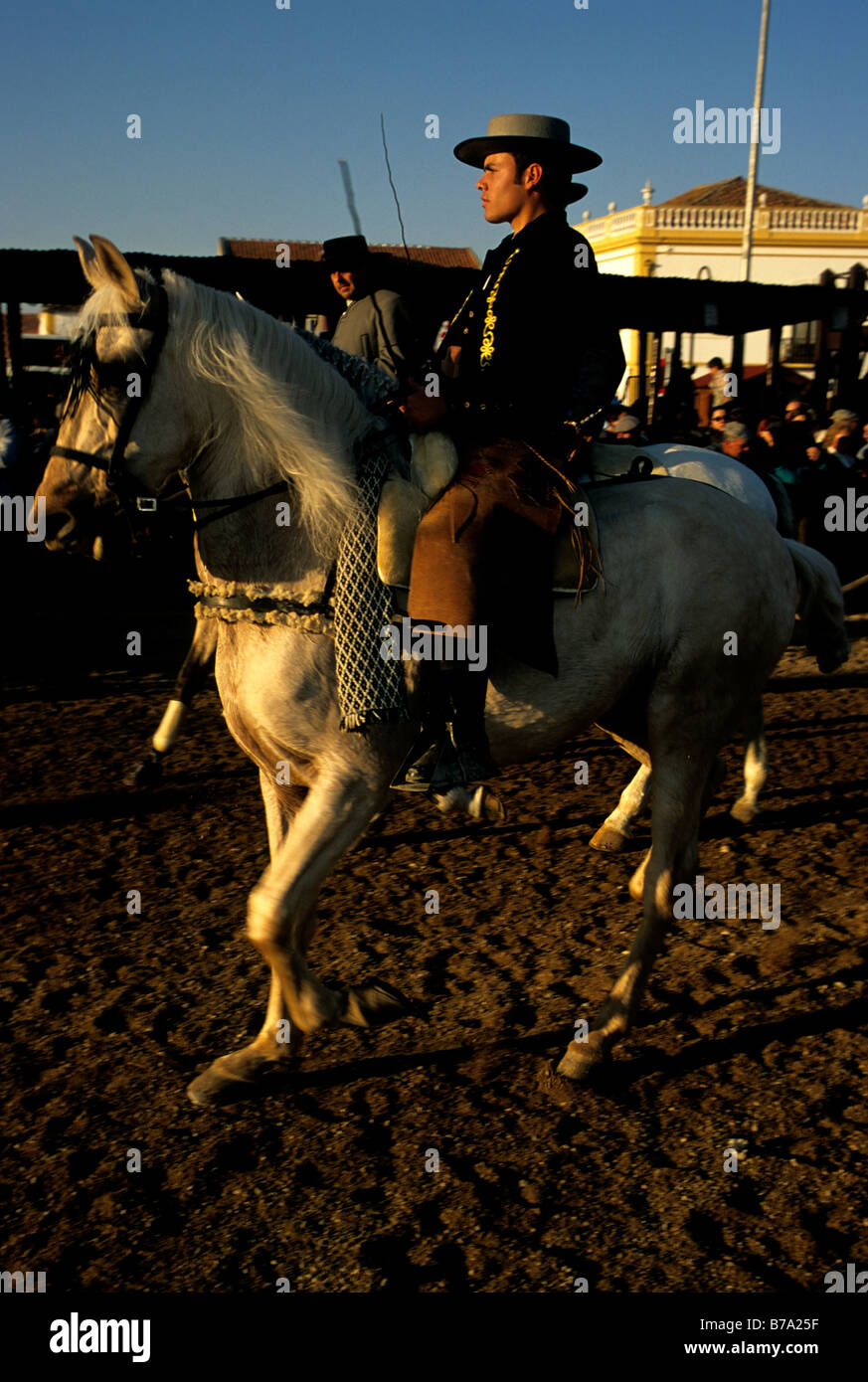 A horseman astride a Lusitano during the annual Golegã horse festival in Portugal - Stock Image