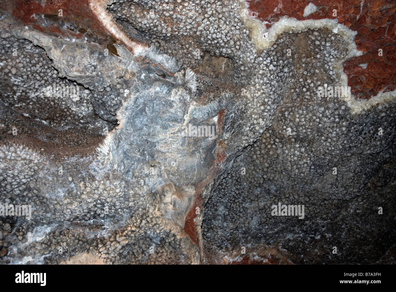 Nailhead Spar Jewel Cave N M South Dakota USA - Stock Image