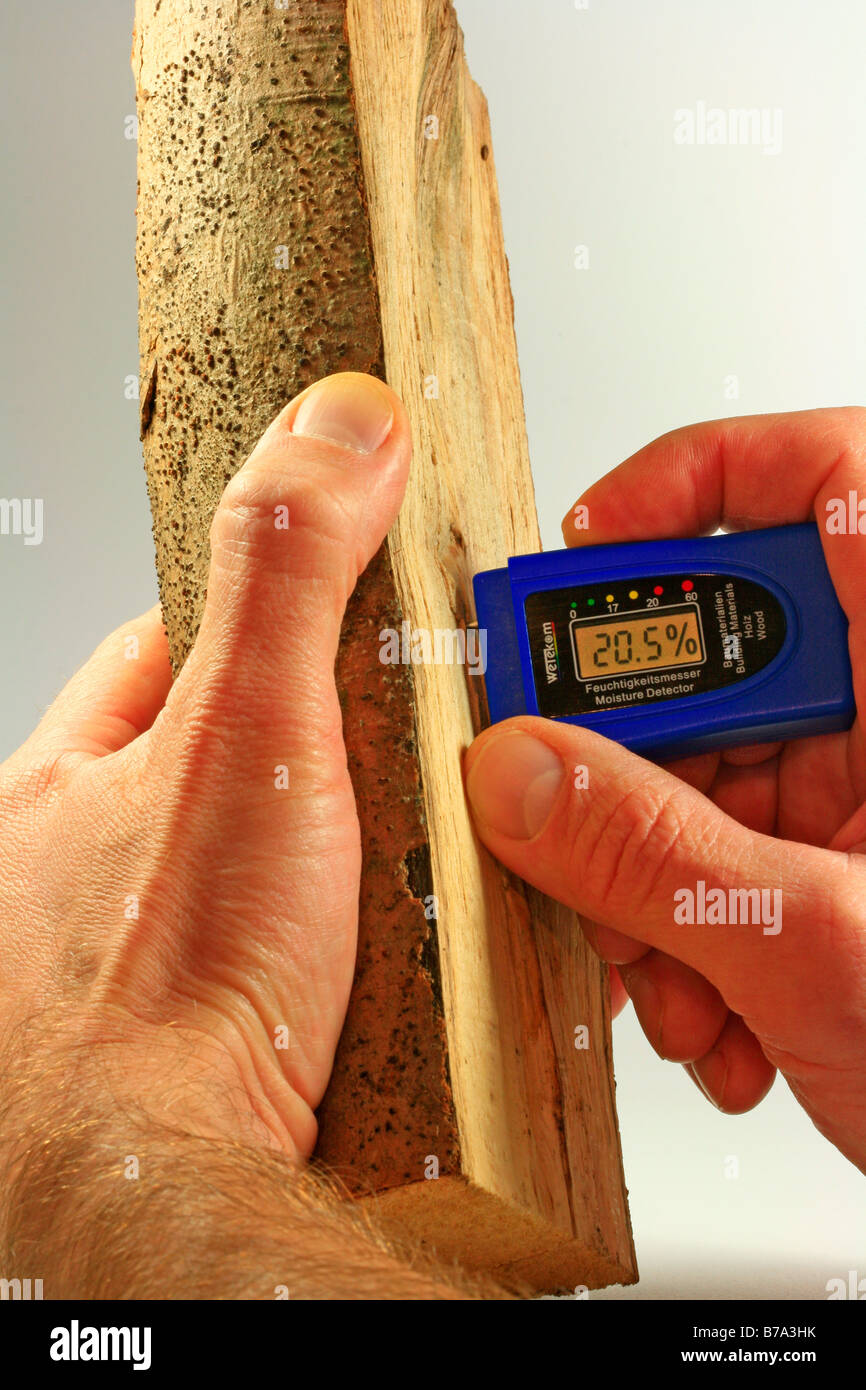 Measuring the moisture content of fire wood with a measuring instrument, optimal value approx. 20% - Stock Image