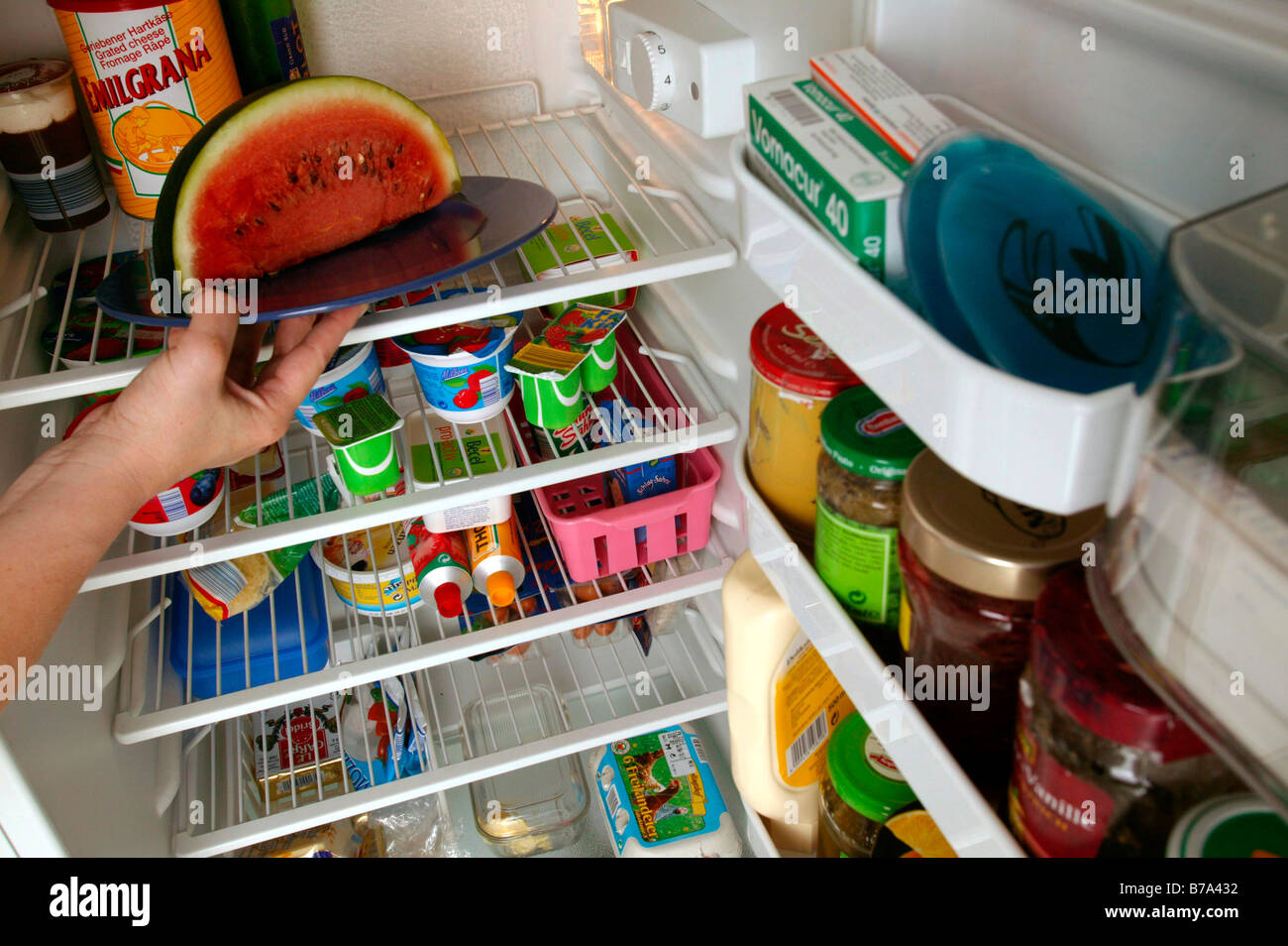 Woman putting food into the fridge, in the kitchen - Stock Image