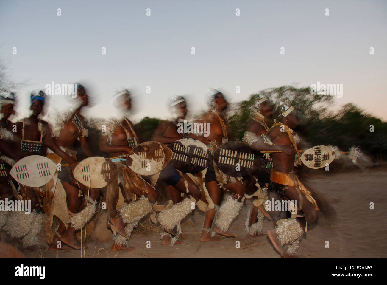 Abstract view of a group of Tonga dancers carrying shields during an evening outdoors dance performance - Stock Image