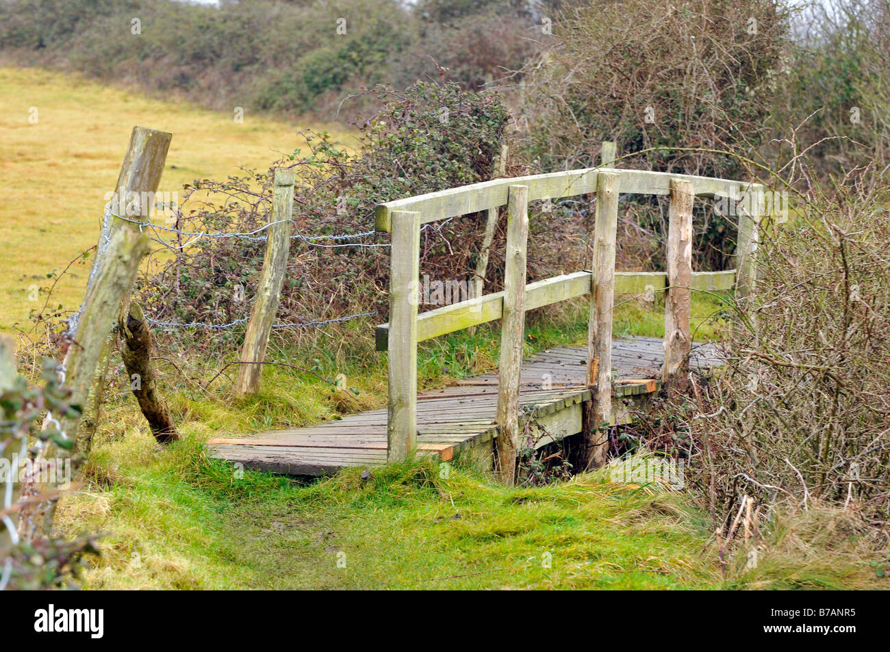 a rickety tumbledown old wooden bridge footbridge on a country walkway pathway used by ramblers and walkers pathways - Stock Image
