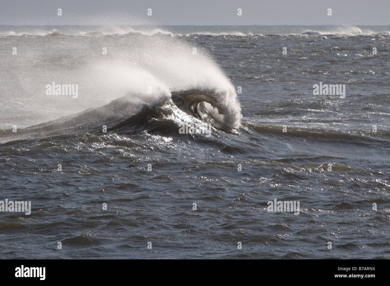 Windswept wave as it crests and plunges toward the NJ shore - Stock Image