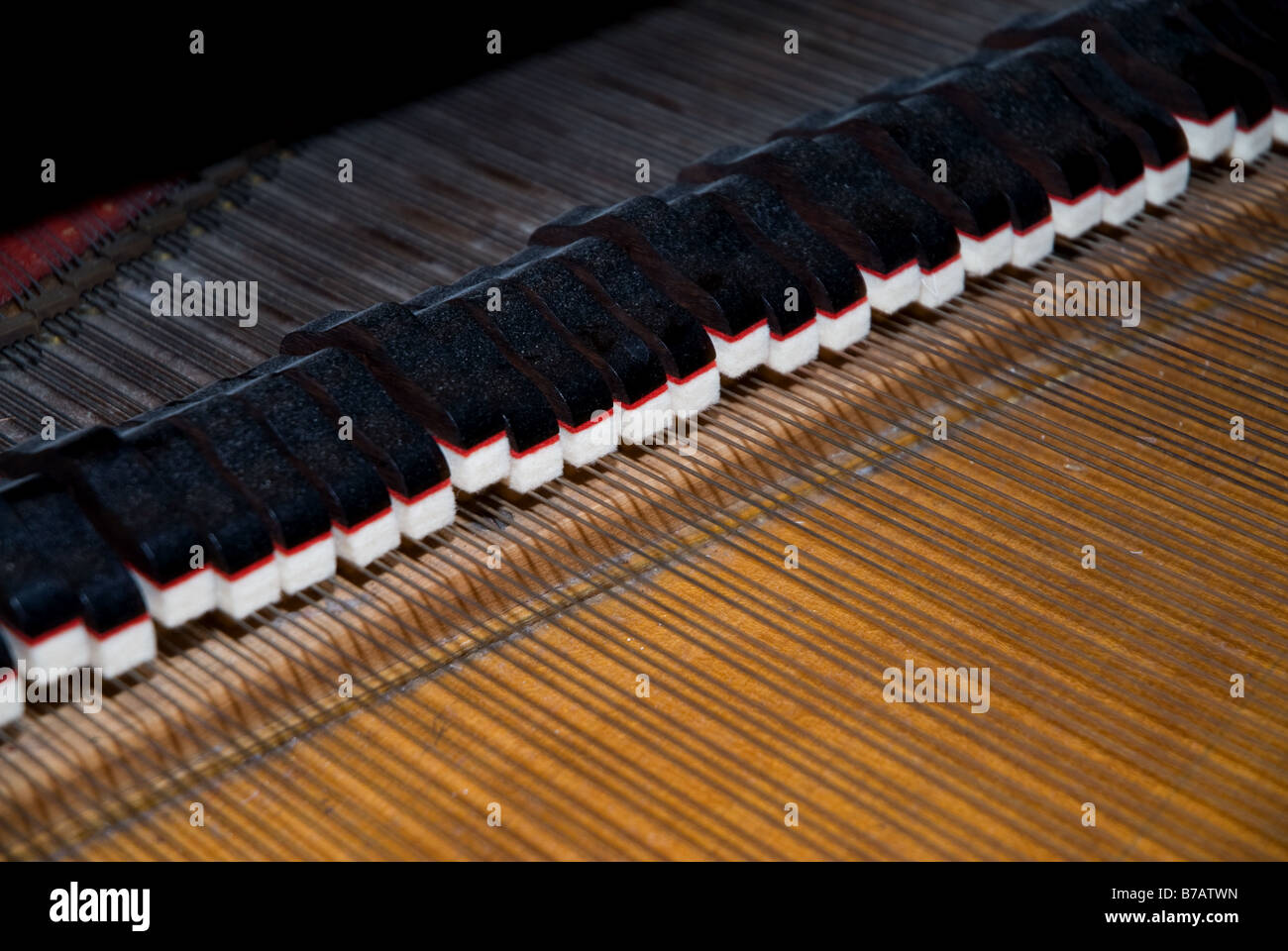 piano strings - Stock Image