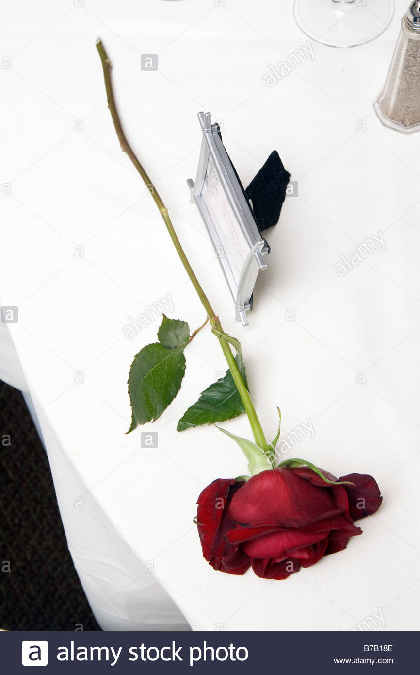 Rose and picture frame on table - Stock Image