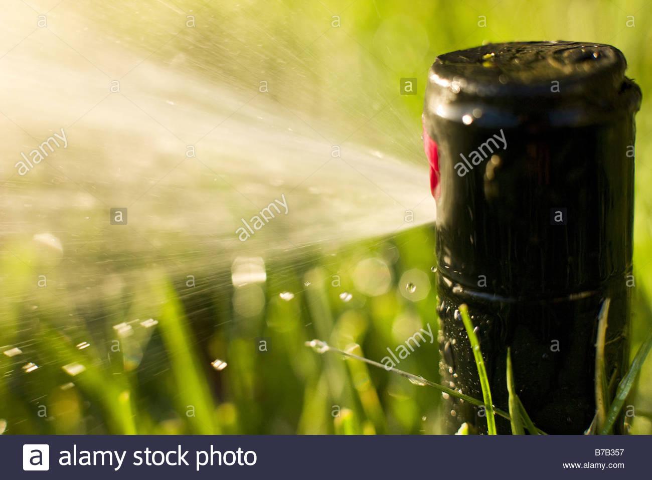 Close up of sprinkler spraying water - Stock Image