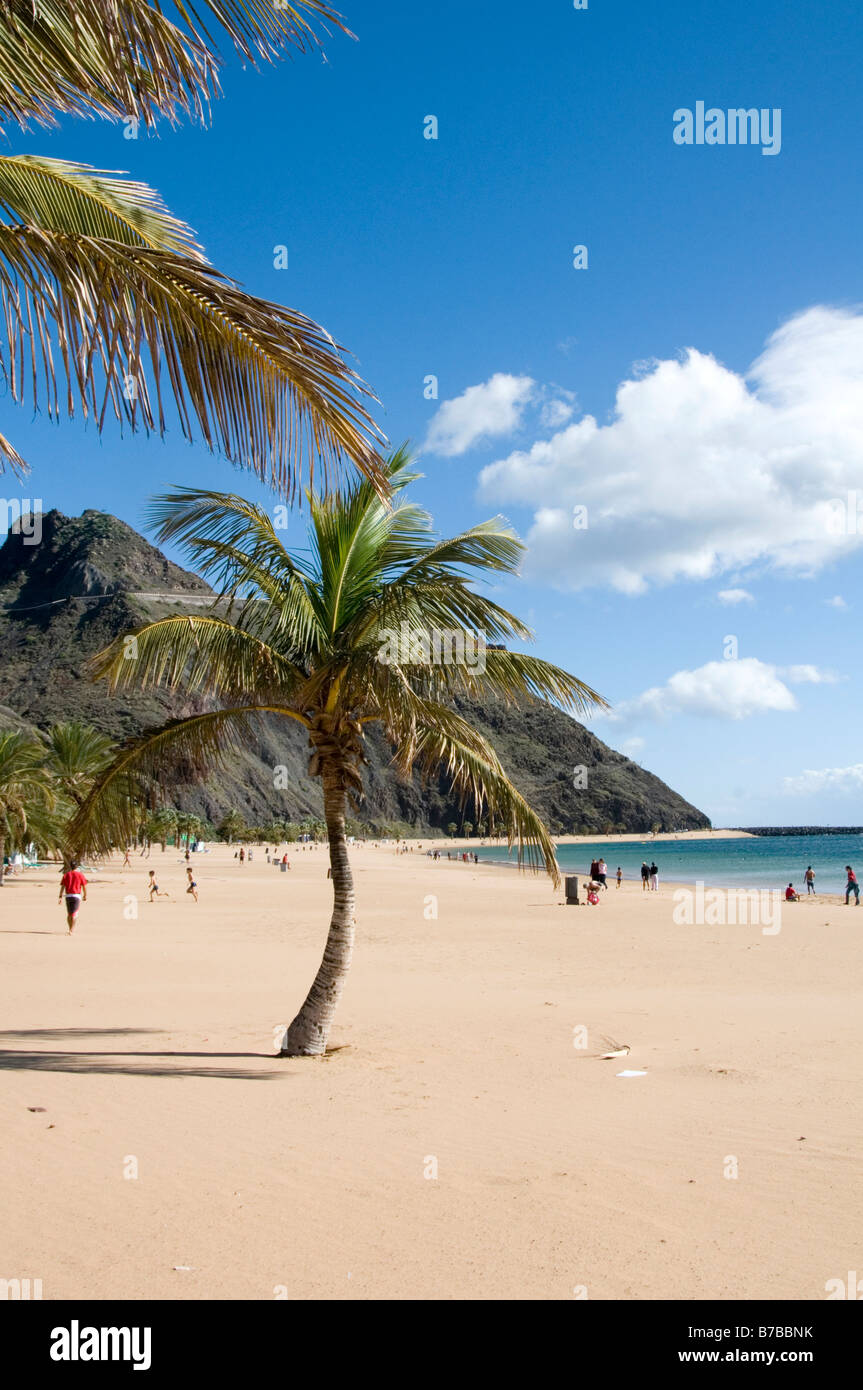 Man made beach white sand Playa de Las Teresitas Teneriffe Tenerife Canary Islands Canaries Spanish island resort - Stock Image