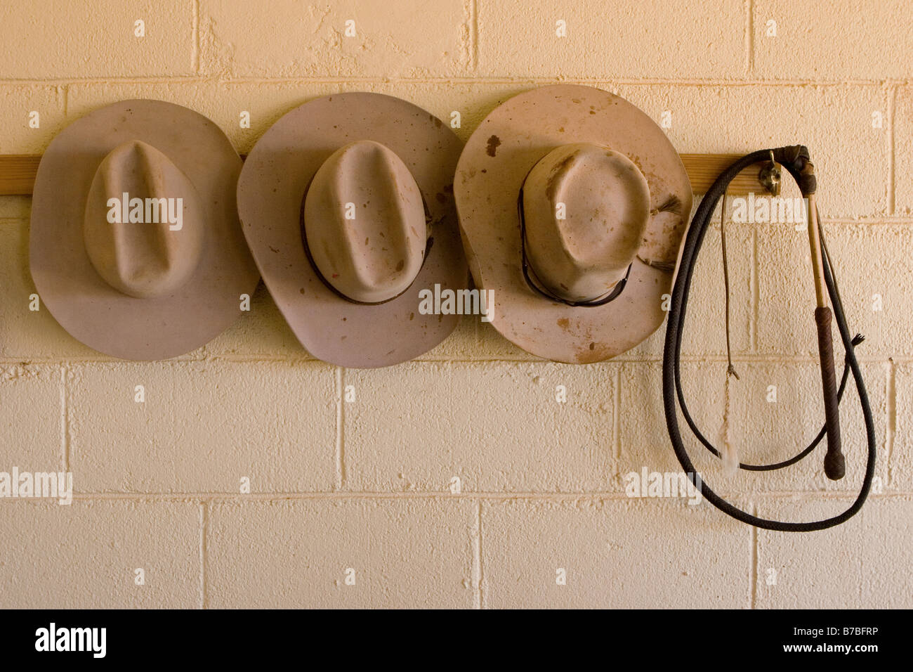 Three cowboy or stockmen hats and whip hanging on wall - Stock Image