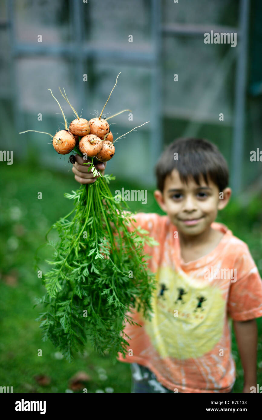 Six year old boy holds bunch of carrots - Stock Image
