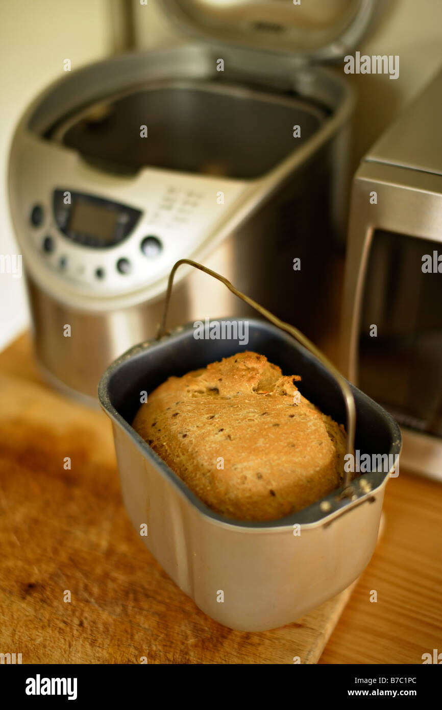 Fresh bread made at home in bread machine - Stock Image