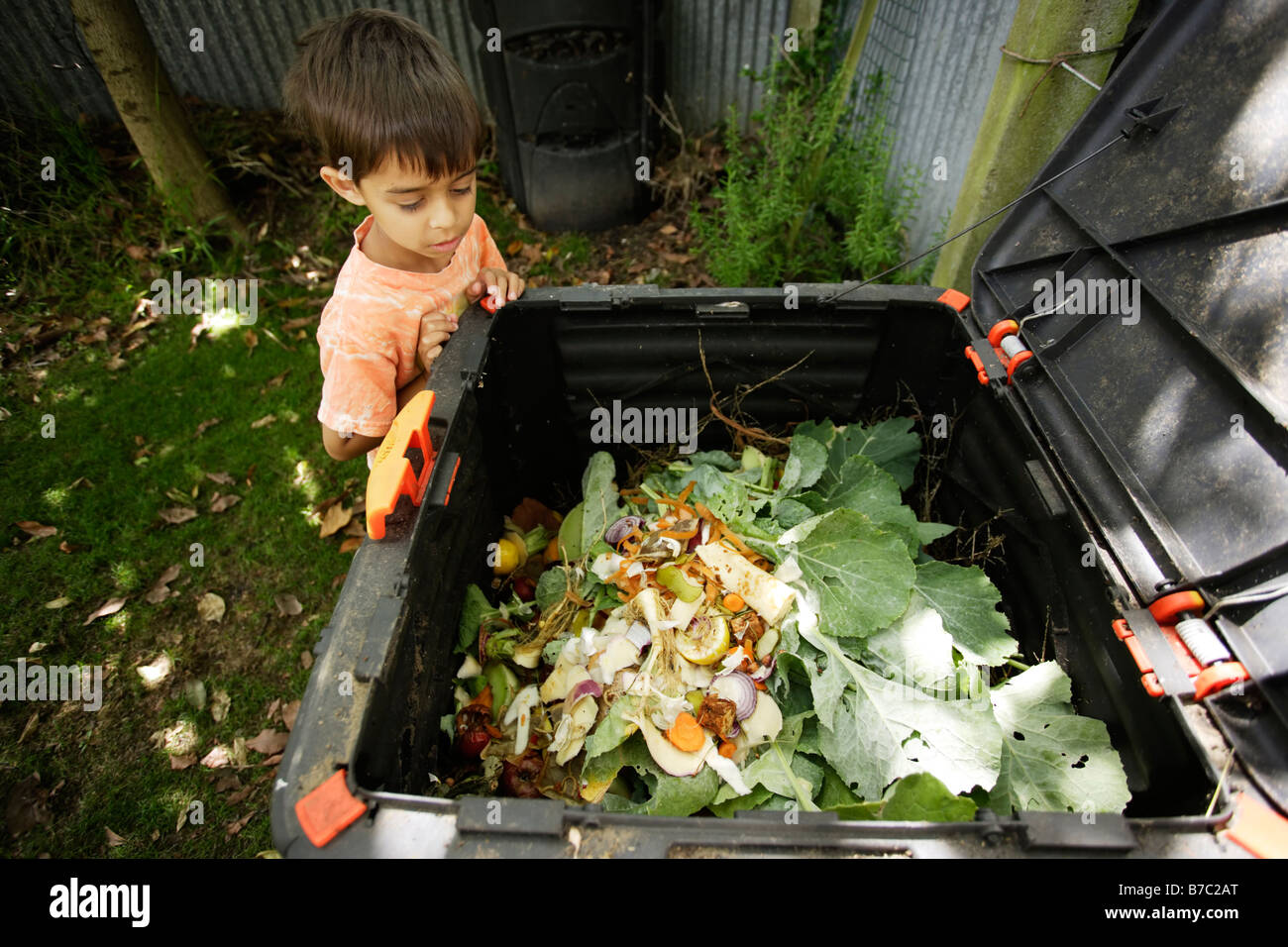 Six year old boy looks into compost bin in garden - Stock Image
