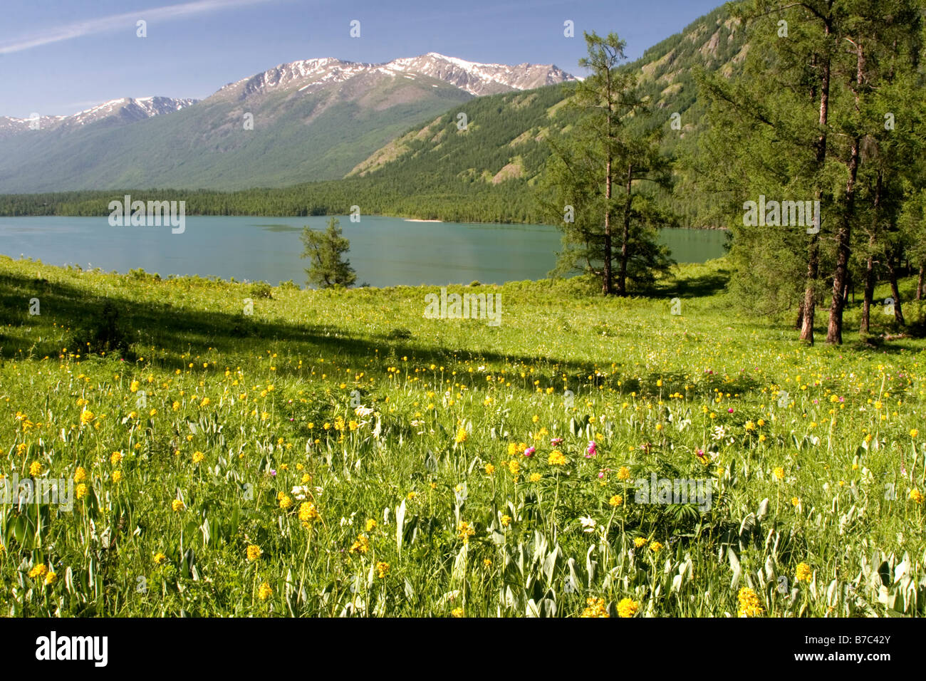 Kanas Lake in the Altay Mountains in Kanas national park in Xinjiang in China. - Stock Image