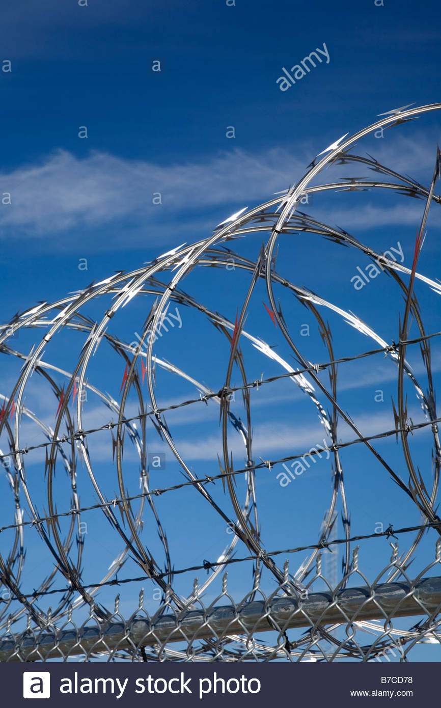 Razor wire concertina wire topping security fence - Stock Image