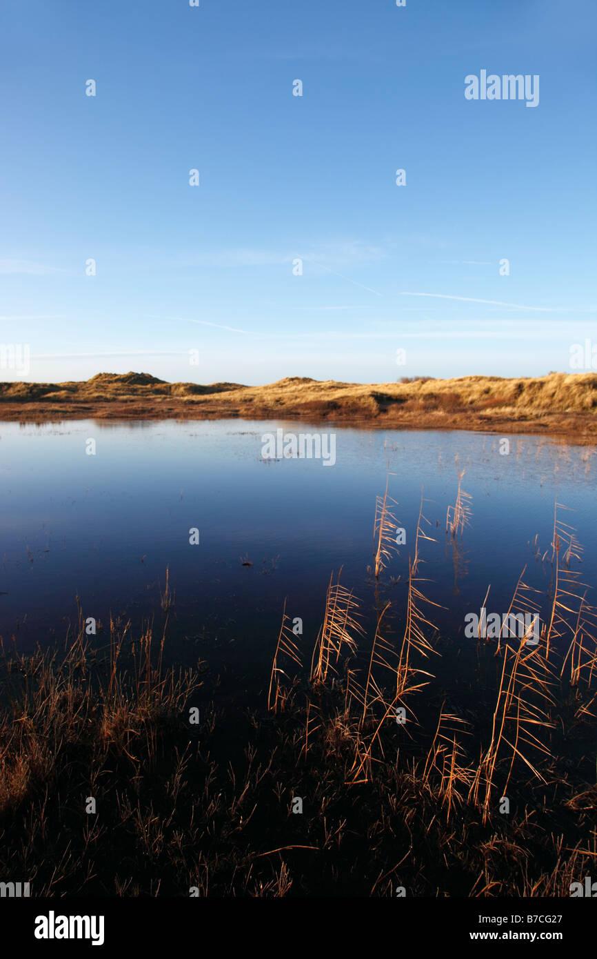 Sand dune habitat with seasonal flooded slack in winterainsdale - Stock Image