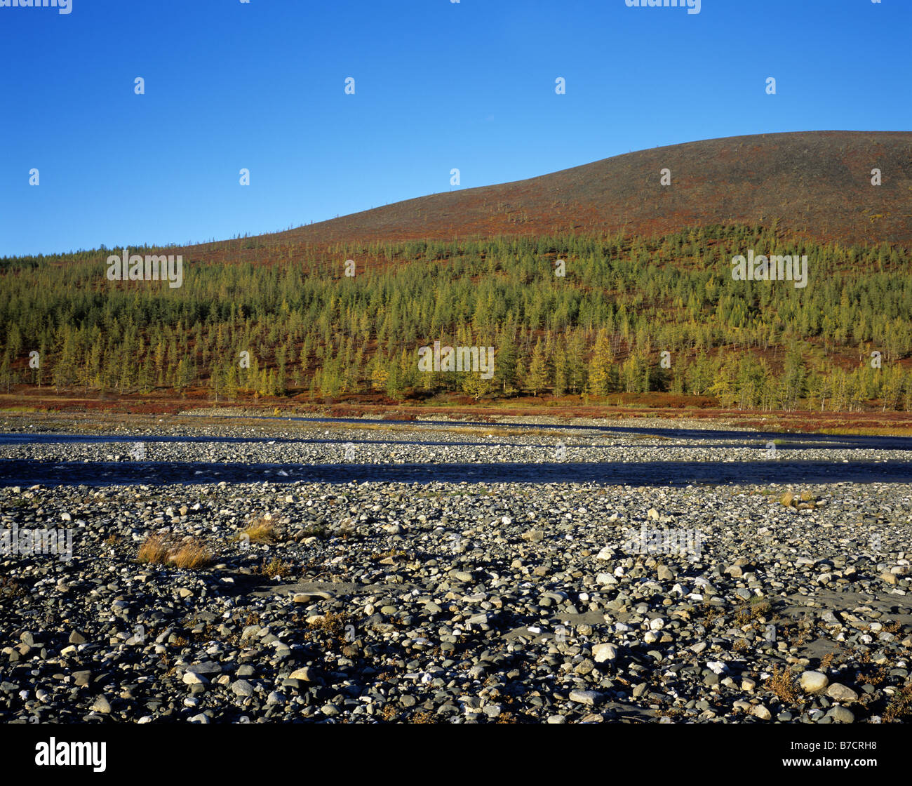 Russia. Yamal Region. Polar Urals. Autumn. Stock Photo