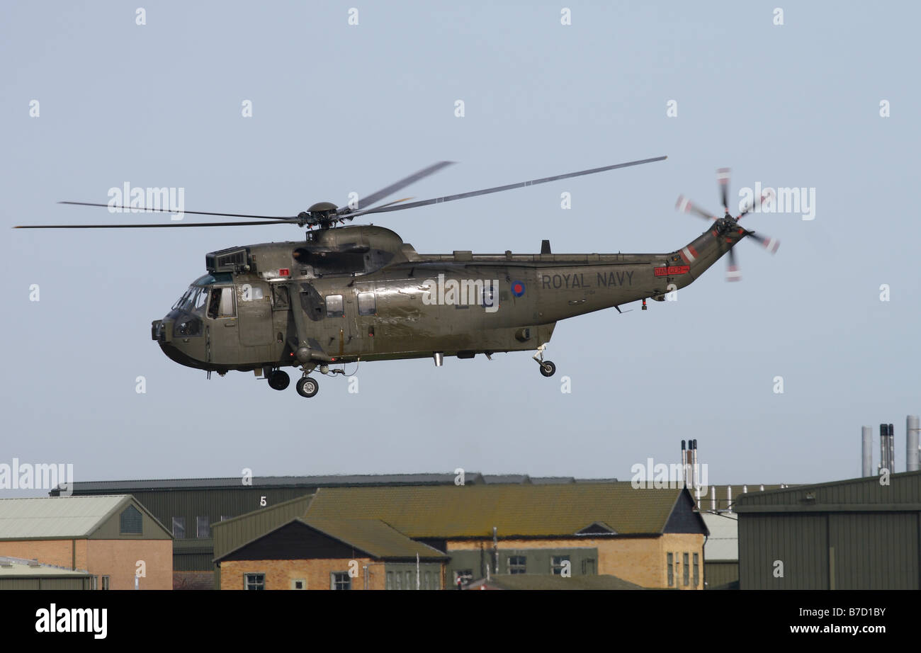 British Royal Navy Westland Sea King HC4 troop carrying helicopter flying at low level January 2009 - Stock Image