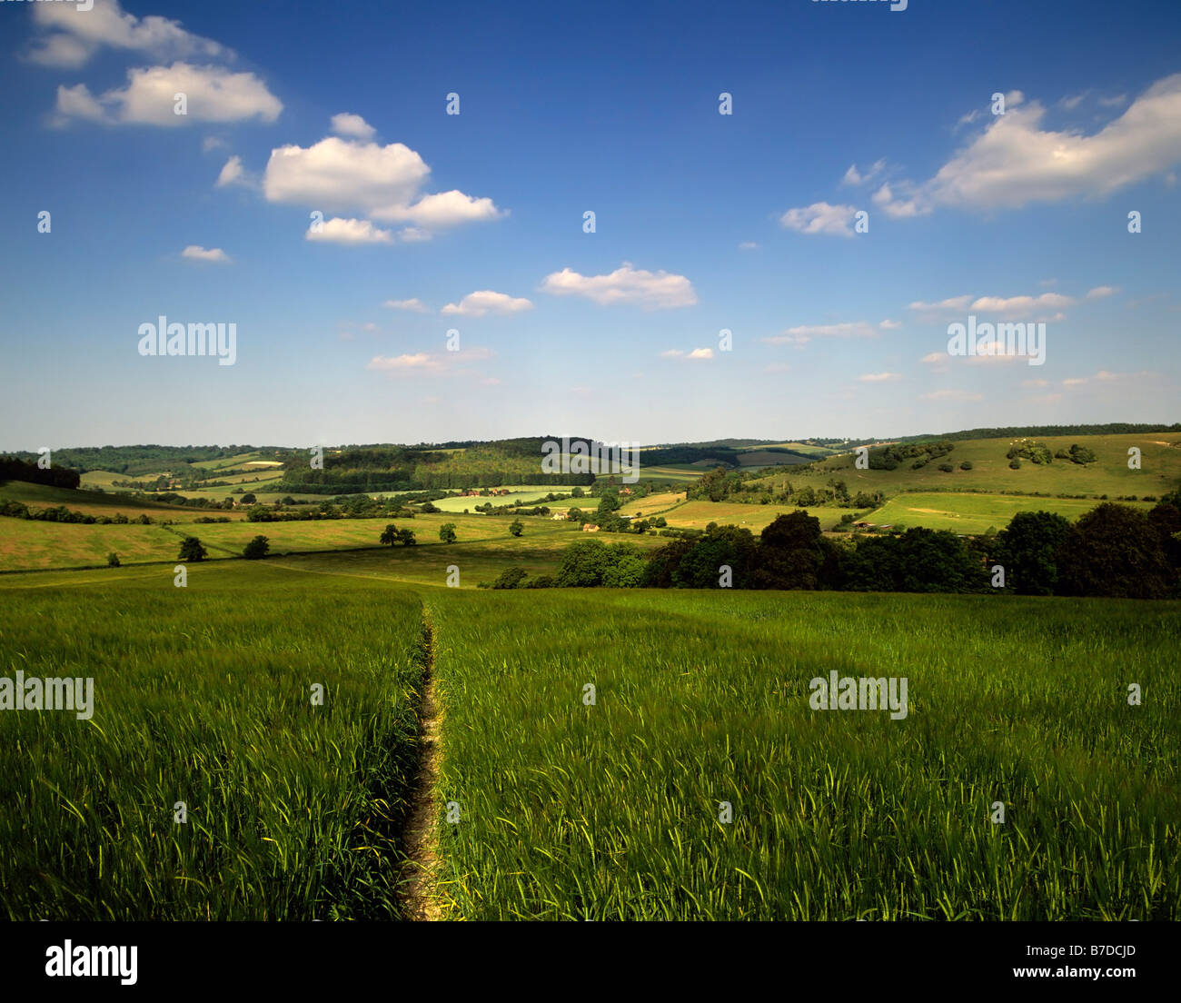 england home counties the chilterns buckinghamshire views from the ridgeway long distance footpath pitstone hill - Stock Image