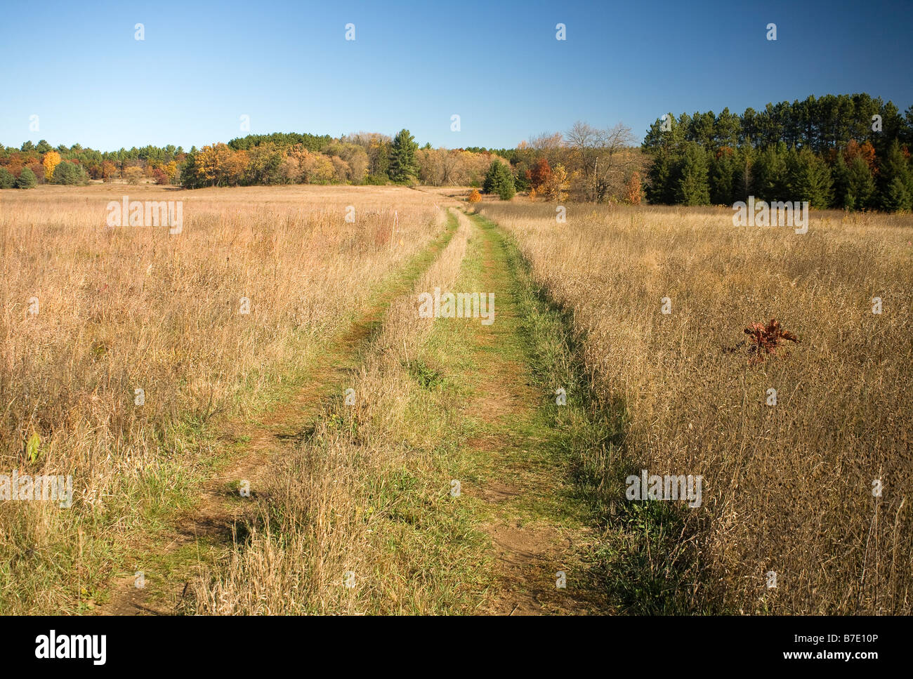 WISCONSIN - The Ice Age National Scenic Trail crossing an open field the Emmons Creek Fishery and Wilderness Area. - Stock Image