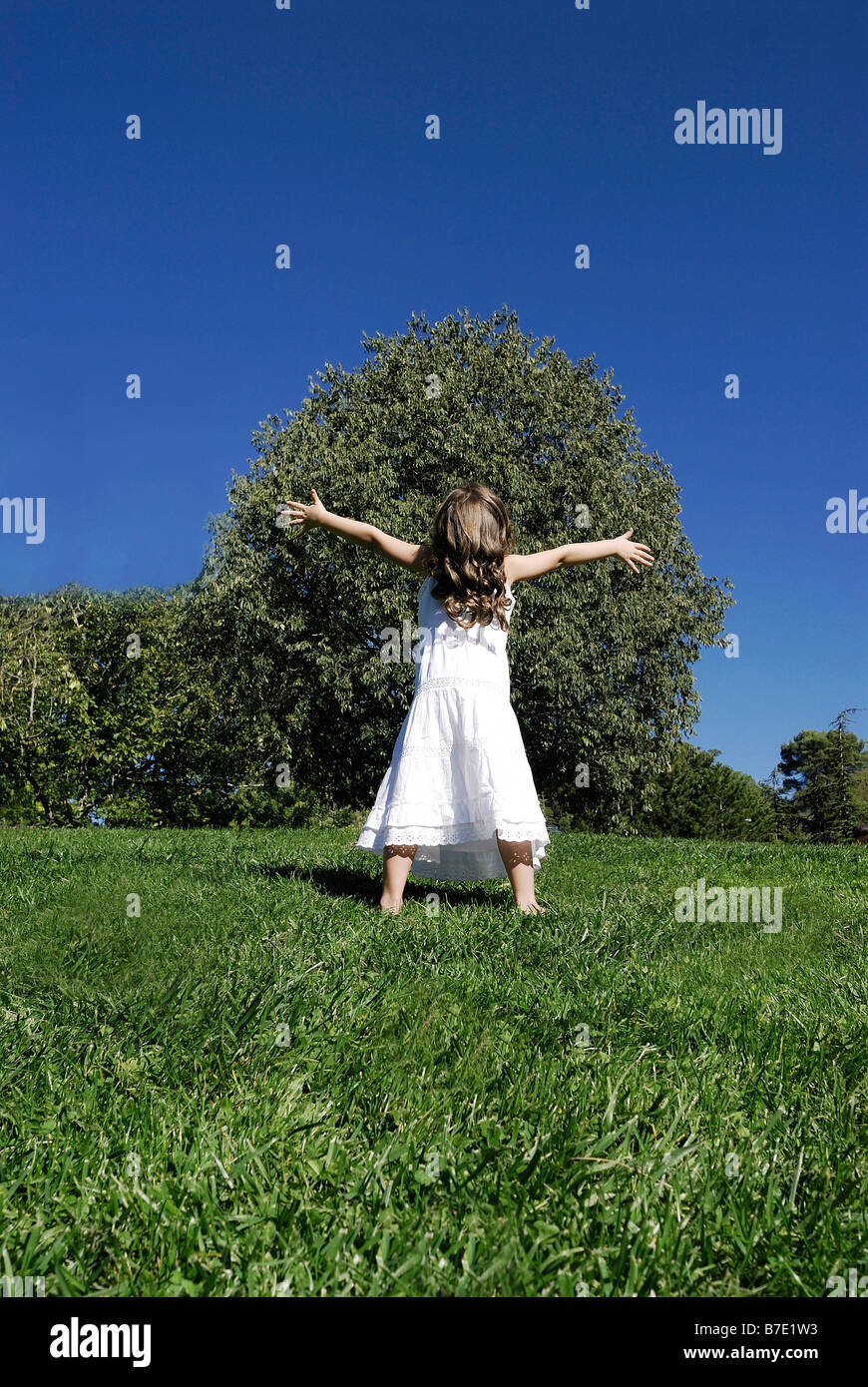 5 years old girl standing by a tree - Stock Image