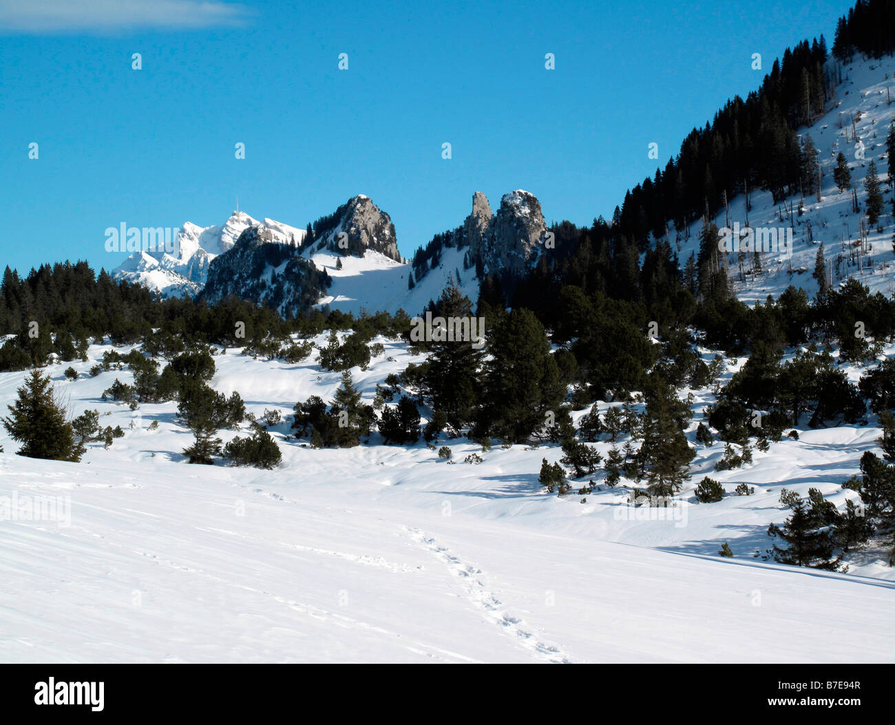 view from viewpoint of hintere hohe near village of amden canton of st gallen to mount santis swiss alpes switzerland Stock Photo