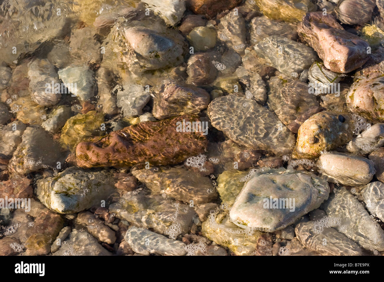Stones in the water edge - Stock Image