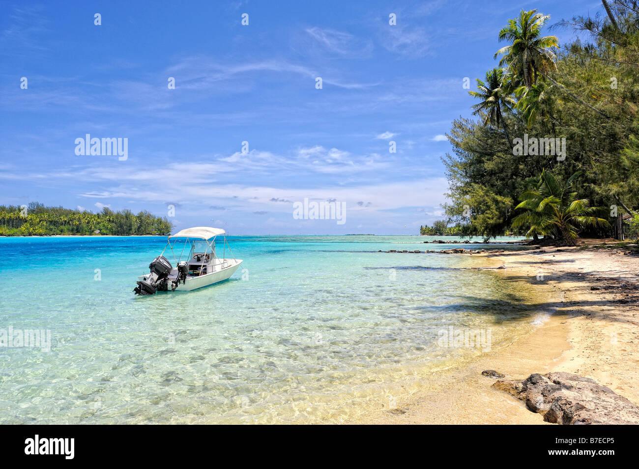 Océan Pacifique Stock Photos & Océan Pacifique Stock Images - Alamy