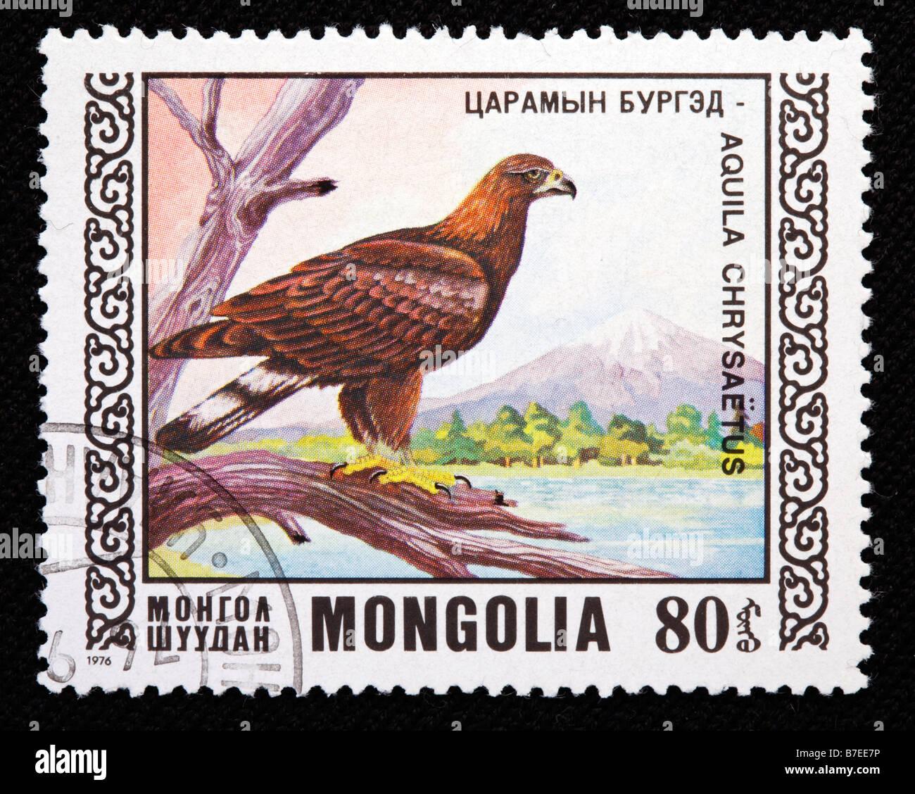 Golden Eagle, Aquila chrysaetos, Accipitridae, postage stamp, Mongolia, 1976 - Stock Image